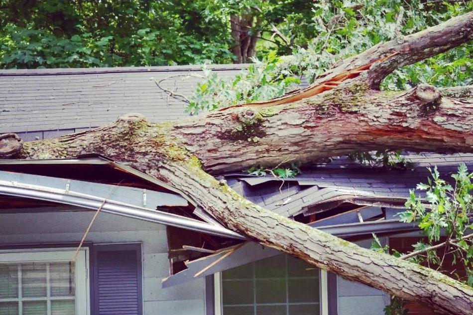 Storm & Hail Damage
